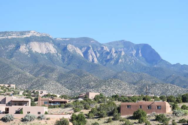 55 Lariat Road, Placitas, NM 87043 (MLS #970821) :: Keller Williams Realty
