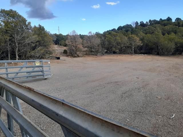 32 Matterhorn Drive, Cedar Crest, NM 87008 (MLS #970835) :: Sandi Pressley Team