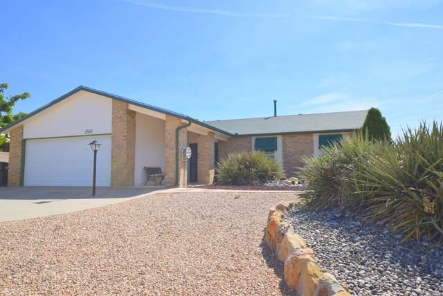 1508 S Blackbird Road NE, Rio Rancho, NM 87144 (MLS #970923) :: Campbell & Campbell Real Estate Services