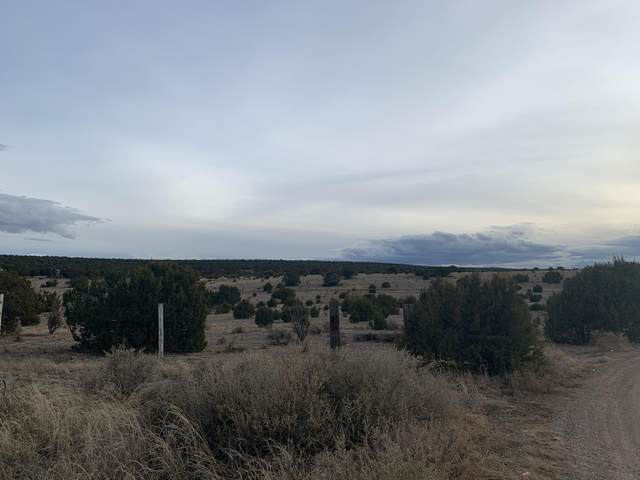 10 Sanford Road, Edgewood, NM 87015 (MLS #971024) :: Campbell & Campbell Real Estate Services