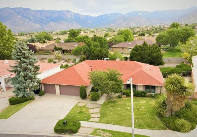 5700 Royal Oak Drive NE, Albuquerque, NM 87111 (MLS #971108) :: Campbell & Campbell Real Estate Services