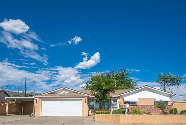 500 Zena Lona Street NE, Albuquerque, NM 87123 (MLS #971159) :: Campbell & Campbell Real Estate Services