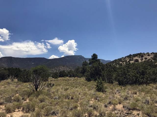 5 Rainbow Valley Road, Placitas, NM 87043 (MLS #971206) :: The Bigelow Team / Red Fox Realty