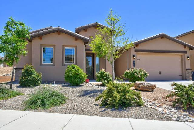 8916 South Sky Street NW, Albuquerque, NM 87114 (MLS #971218) :: The Bigelow Team / Red Fox Realty