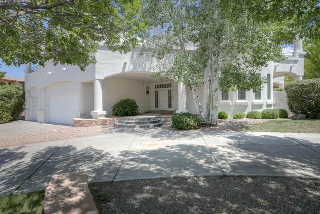 11909 Summerwind Place NE, Albuquerque, NM 87122 (MLS #971260) :: The Buchman Group