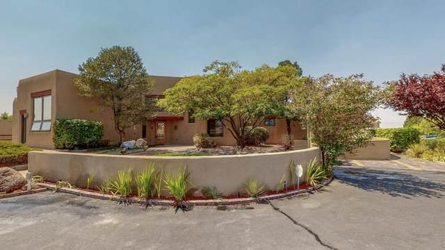 11600 San Rafael Avenue NE, Albuquerque, NM 87122 (MLS #971263) :: The Buchman Group