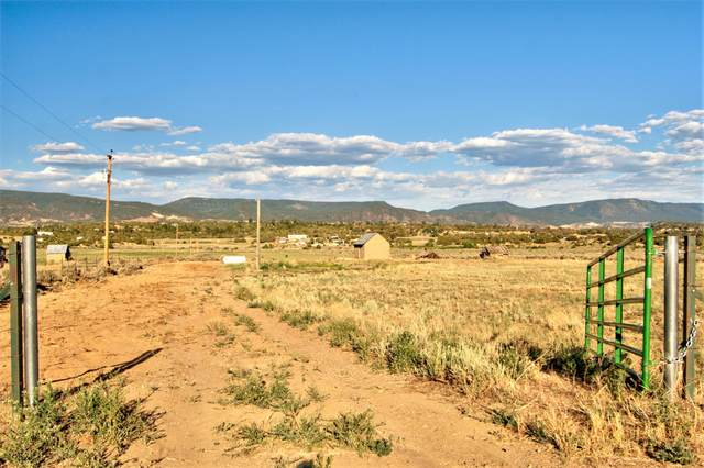 Tbd Nm Hwy 197, Cuba, NM 87013 (MLS #971299) :: Campbell & Campbell Real Estate Services