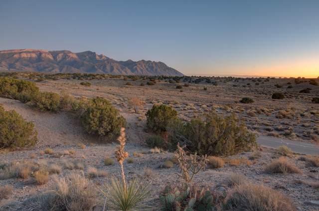 11 Sky Mountain, Placitas, NM 87043 (MLS #971336) :: The Bigelow Team / Red Fox Realty