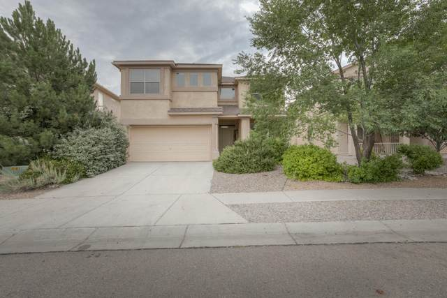10436 Oso Ridge Place NW, Albuquerque, NM 87114 (MLS #971352) :: Campbell & Campbell Real Estate Services