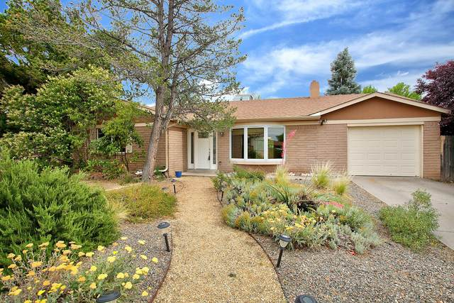 6520 Cathy Avenue NE, Albuquerque, NM 87109 (MLS #971411) :: Campbell & Campbell Real Estate Services