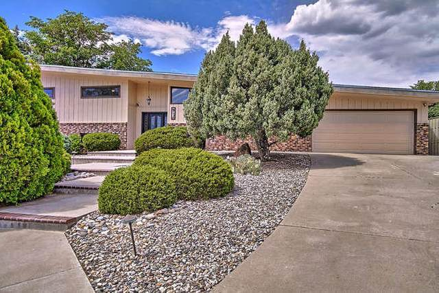 4708 Westridge Place NE, Albuquerque, NM 87111 (MLS #971544) :: The Bigelow Team / Red Fox Realty