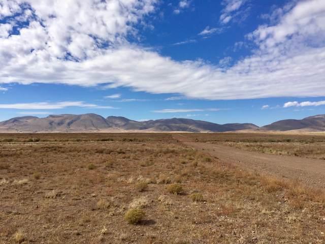 232 La Cienega Ranch Road, San Antonio, NM 87832 (MLS #971545) :: The Bigelow Team / Red Fox Realty