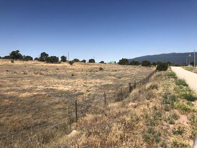80 Scotts Road, Tijeras, NM 87059 (MLS #971569) :: Campbell & Campbell Real Estate Services