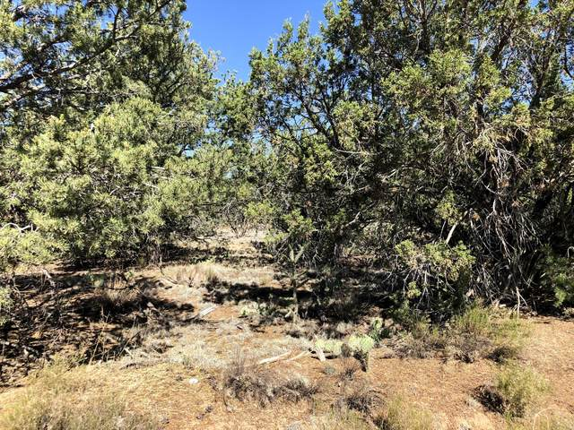 Bryant Road, Edgewood, NM 87015 (MLS #971584) :: Campbell & Campbell Real Estate Services