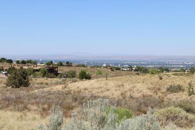 13604 Barranca Vista Court NE, Albuquerque, NM 87111 (MLS #971603) :: Campbell & Campbell Real Estate Services