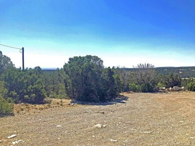 47 Duke Road, Edgewood, NM 87015 (MLS #971616) :: Campbell & Campbell Real Estate Services