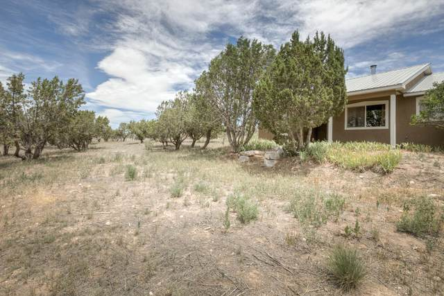 9 Summer Court, Edgewood, NM 87015 (MLS #971643) :: Campbell & Campbell Real Estate Services