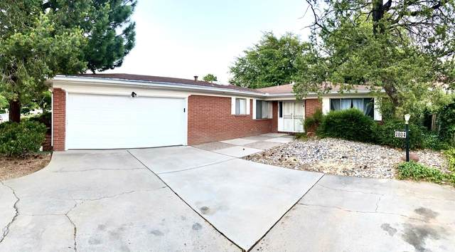 2804 Dallas Street NE, Albuquerque, NM 87110 (MLS #971690) :: The Bigelow Team / Red Fox Realty