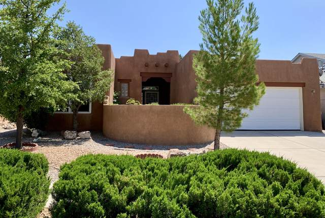10220 Green River Place NW, Albuquerque, NM 87114 (MLS #971736) :: The Bigelow Team / Red Fox Realty