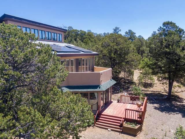 10 Sylvan Dell Avenue, Tijeras, NM 87059 (MLS #971752) :: Campbell & Campbell Real Estate Services