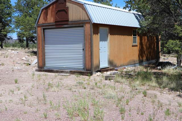 122 Homestead Trail, Datil, NM 87821 (MLS #971781) :: The Buchman Group