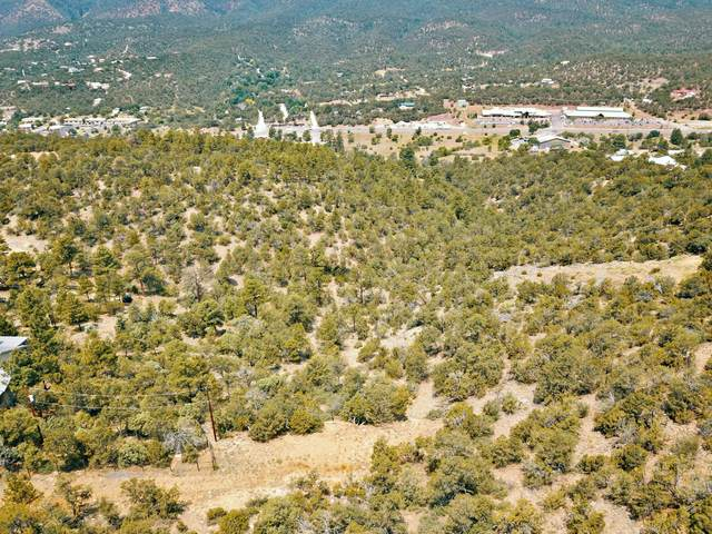 0 Sangre De Cristo, Cedar Crest, NM 87008 (MLS #971793) :: Campbell & Campbell Real Estate Services