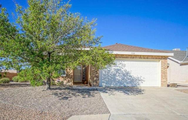 7300 Winslow Place NW, Albuquerque, NM 87114 (MLS #971796) :: The Buchman Group