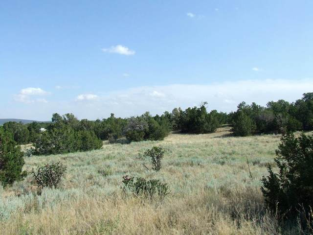 Wildlife Trail, Edgewood, NM 87015 (MLS #971801) :: Campbell & Campbell Real Estate Services