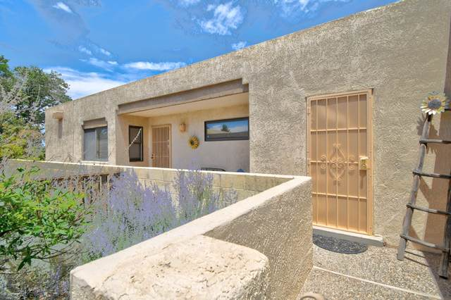 2436 Tramway Terrace Court NE, Albuquerque, NM 87122 (MLS #971804) :: Campbell & Campbell Real Estate Services