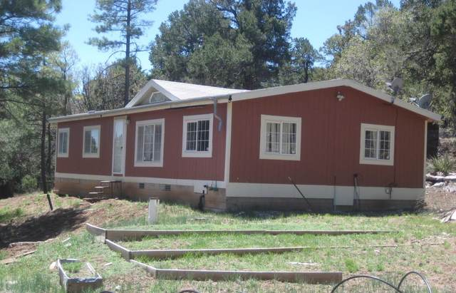41 Little Dipper Road, Tijeras, NM 87059 (MLS #971810) :: Campbell & Campbell Real Estate Services