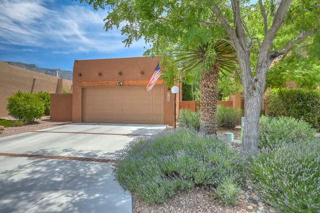2146 Black Willow Drive NE, Albuquerque, NM 87122 (MLS #971821) :: The Bigelow Team / Red Fox Realty