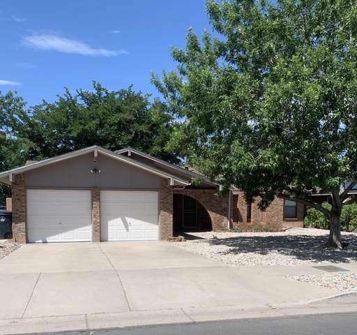 6005 Carruthers Street NE, Albuquerque, NM 87111 (MLS #971824) :: The Bigelow Team / Red Fox Realty