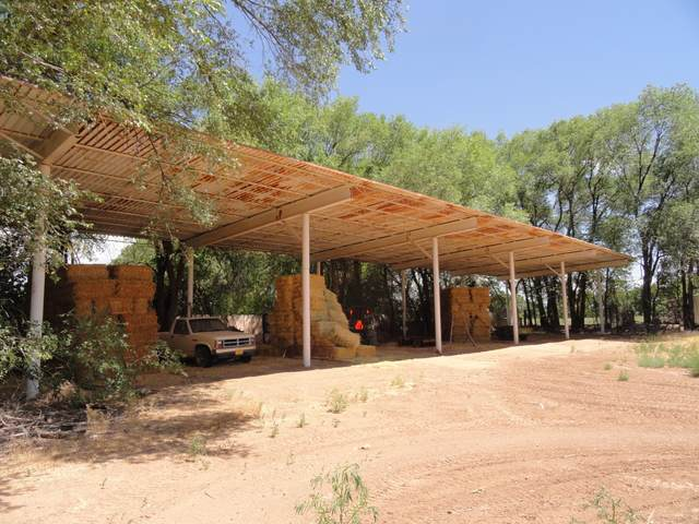 Molina Road, Peralta, NM 87042 (MLS #971858) :: Sandi Pressley Team