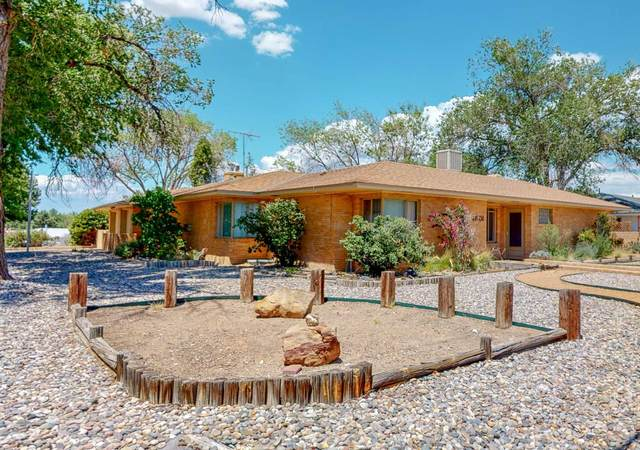 4901 Constitution Avenue NE, Albuquerque, NM 87110 (MLS #971864) :: The Buchman Group