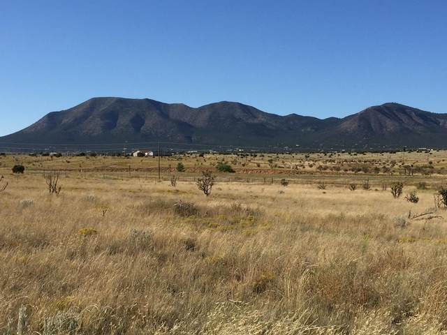 1 Weimer Road, Edgewood, NM 87015 (MLS #971870) :: Campbell & Campbell Real Estate Services