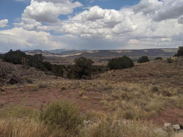 Grants Land 335 Acres, Grants, NM 87020 (MLS #971917) :: Campbell & Campbell Real Estate Services