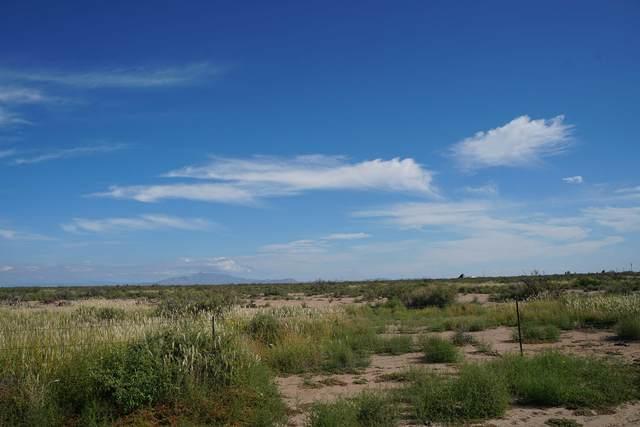 Track 5 El Bordo Road SW, Deming, NM 88030 (MLS #971924) :: The Buchman Group