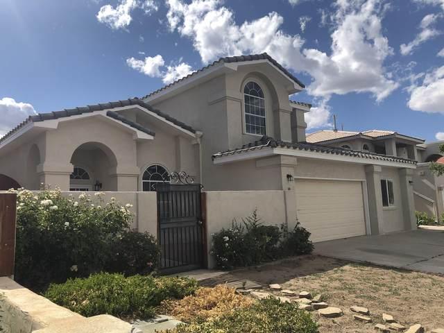 8735 Tierra Alegre Drive NE, Albuquerque, NM 87122 (MLS #971952) :: The Buchman Group