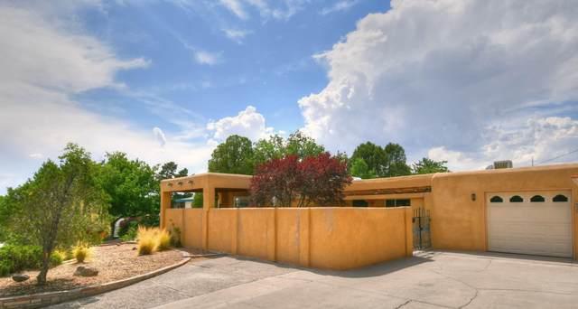 4419 Joe Dan Place NE, Albuquerque, NM 87110 (MLS #971989) :: The Buchman Group