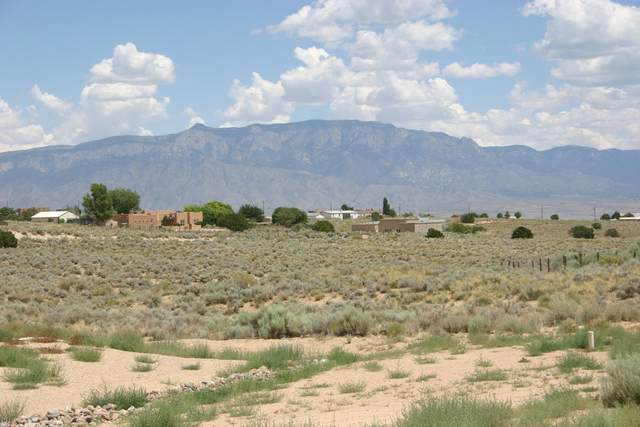 705 Afuste Road NE, Rio Rancho, NM 87124 (MLS #971997) :: Campbell & Campbell Real Estate Services