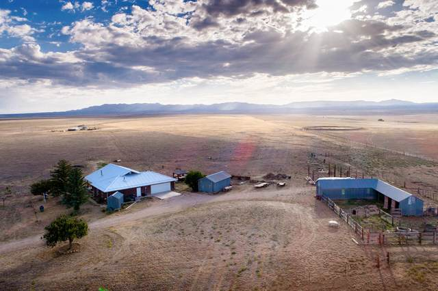 81 Akin Farm Road, Estancia, NM 87016 (MLS #971998) :: The Buchman Group