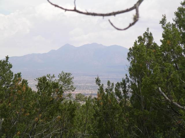 Stagecoach, Sandia Park, NM 87047 (MLS #972102) :: Campbell & Campbell Real Estate Services