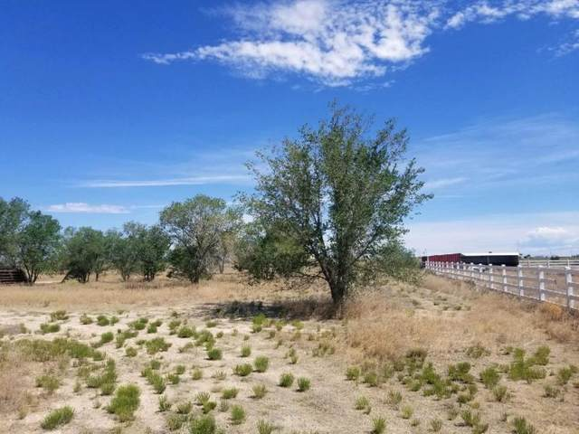 134 Mi Ranchito Road, Moriarty, NM 87035 (MLS #972152) :: Campbell & Campbell Real Estate Services