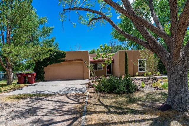 1035 Camino De Chavez Place, Bosque Farms, NM 87068 (MLS #972161) :: Campbell & Campbell Real Estate Services