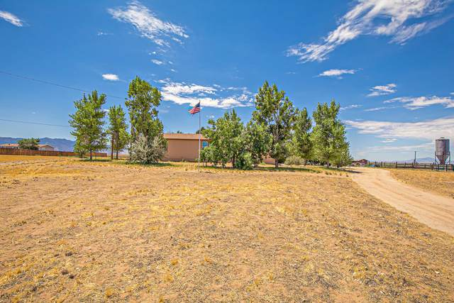 470 Meadow Lake Road, Los Lunas, NM 87031 (MLS #972198) :: Campbell & Campbell Real Estate Services