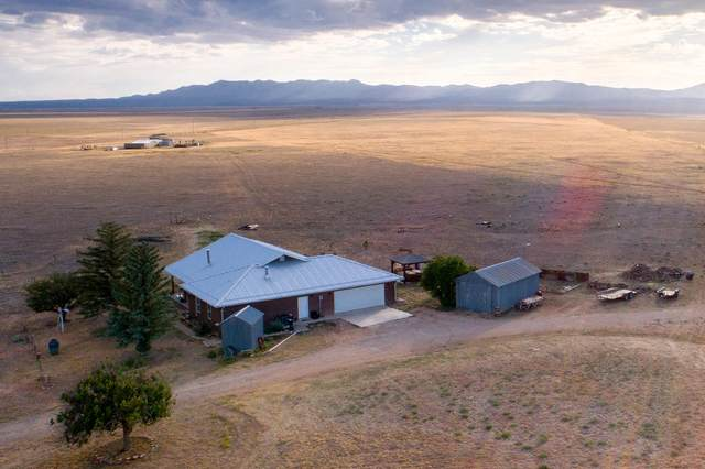 81 Akin Farm Road, Estancia, NM 87016 (MLS #972206) :: The Buchman Group