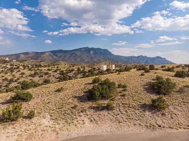 7B Ranchos De Placitas, Placitas, NM 87043 (MLS #972242) :: The Bigelow Team / Red Fox Realty