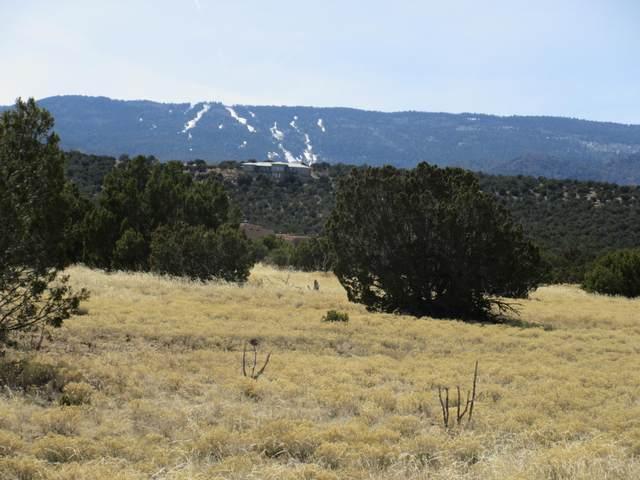 1 Osito Road, Sandia Park, NM 87047 (MLS #972263) :: Berkshire Hathaway HomeServices Santa Fe Real Estate