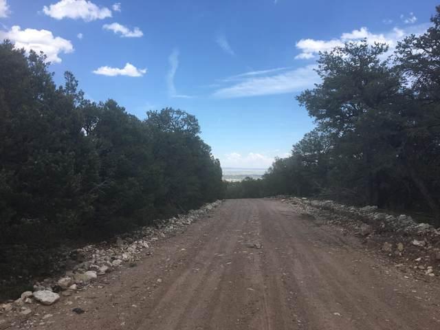 10 Vista Alta Drive, Tijeras, NM 87059 (MLS #972316) :: Campbell & Campbell Real Estate Services
