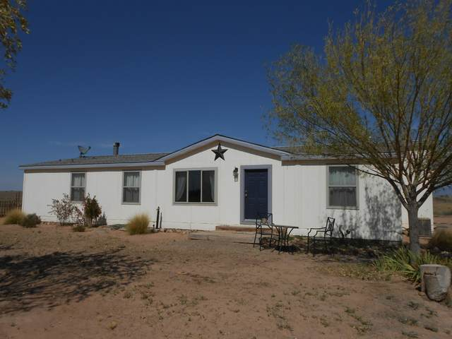 209 Claudine Drive, Belen, NM 87002 (MLS #972329) :: Campbell & Campbell Real Estate Services